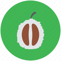 food, fruit, half litchi, healthy food, leechee, lichee, lichii, lychee icon
