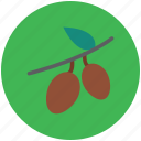 food, fruit, healthy food, leechee, lichee, lichii, litchi, lychee