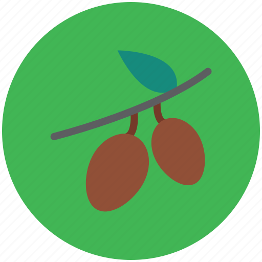 food, fruit, healthy food, leechee, lichee, lichii, litchi, lychee icon
