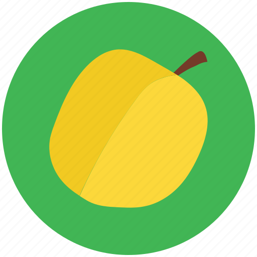 apricot, food, fruit, healthy diet, peach icon
