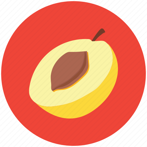 apricot, food, fruit, half of apricot, healthy diet, peach icon