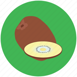 coco, coconut, nut, sweet fruit, tropical fruit icon