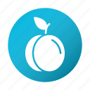 blue, food, fruit, plum, tasty icon