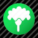 cauliflower, cooking, food, tasty, vegetable icon