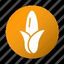 corn, food, kitchen, tasty, vegetable icon