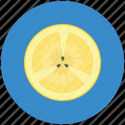 citrus, citrus half, food, fruit, lemon, lime icon
