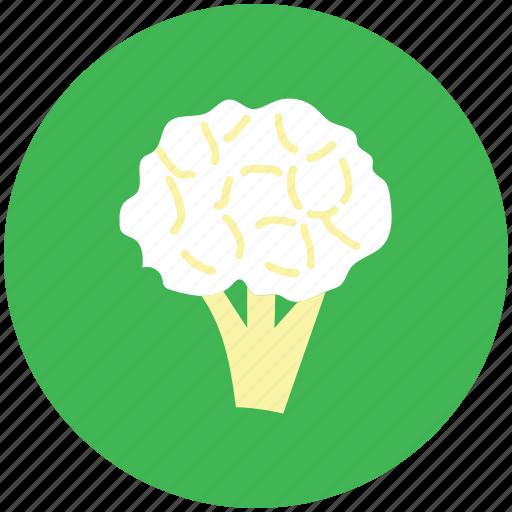 broccoli, cabbage, cauliflower, food, vegetable icon