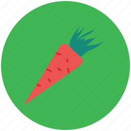 carrot, diet, healthy diet, nutrition, root vegetable, vegetable icon