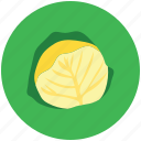 brassicaceae vegetable, cauliflower, diet, healthy diet, vegetable icon