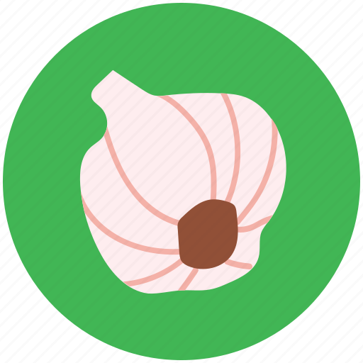 allium sativum, diet, food, garlic, spice icon
