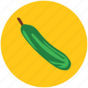 bottle gourd, diet, food, gourd, vegetable icon