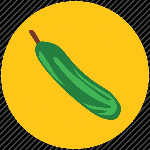bottle gourd, diet, food, gourd, vegetable icon