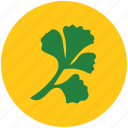 basil, foliage, garnish ingredient, herbs, parsley, raw food, vegetable icon