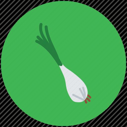 food, green onion, scallion, spring onion, vegetable icon