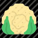 cauliflower, diet, fruit, oragnic, vegetable icon