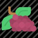 diet, fruit, grape, oragnic, vegetable icon
