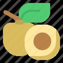 diet, fruit, lonang, oragnic, vegetable icon