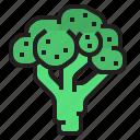 broccoli, diet, fruit, oragnic, vegetable icon