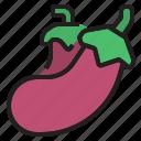 diet, eggplant, fruit, oragnic, vegetable icon