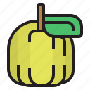 diet, fruit, guava, oragnic, vegetable icon