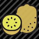 diet, fruit, kiwi, oragnic, vegetable icon