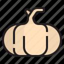 diet, fruit, onion, oragnic, vegetable icon