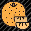 diet, fruit, oragnic, orange, vegetable icon