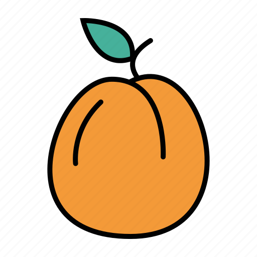 apricot, food, fruit icon