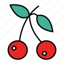 cherries, food, fresh, fruit icon