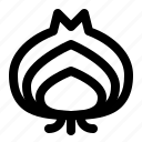 food, garlic, ingredient, kitchen, onion