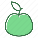 apple, food, fresh, fruit icon
