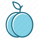 blue, food, fruit, plum icon