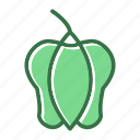 food, pepper, sweet, vegetable icon