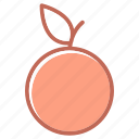 fruit, orange