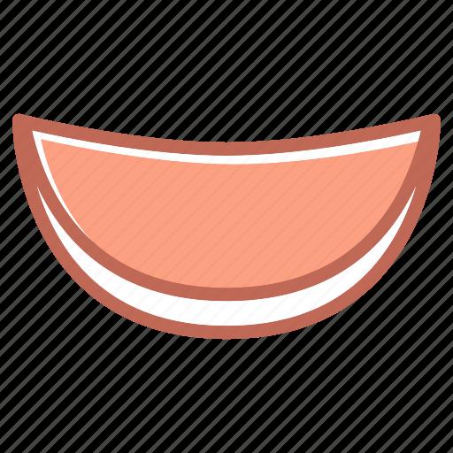 melon, water icon