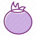 onion, vegetable icon