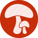 food, fruit, fruits, gastronomy, mushroom, veg, vegetable icon