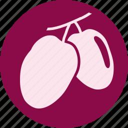 berry, fruit, fruits, gastronomy, oliv, petit, vegetable icon