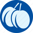 apricot, fruit, fruits, gastronomy, plum, veg, vegetable icon