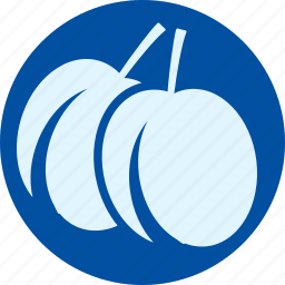 apricot, fruit, fruits, gastronomy, plum, veg, vegetable icon
