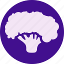 broccoly, fruit, fruits, gastronomy, green, veg, vegetable icon