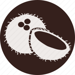coconut, food, fruit, fruits, gastronomy, veg, vegetable icon