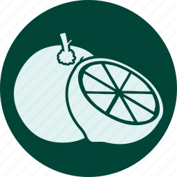 fruit, fruits, gastronomy, healthy, orange, veg, vegetable icon