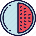 eating, food, fruit, health, melon icon