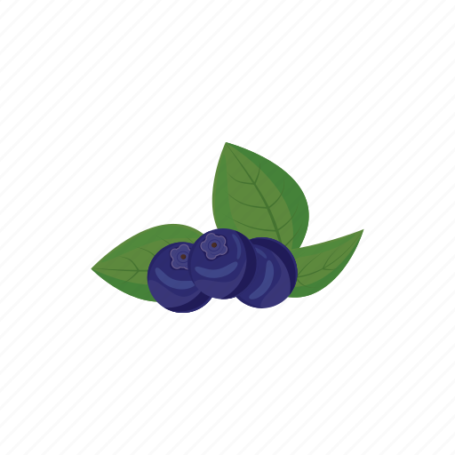 berry, bilberry, blueberry, cartoon, food, fresh, fruit icon