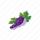 berry, cartoon, fruit, grape, healthy, ripe, vine icon