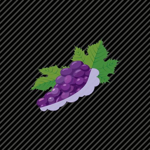 berry, cartoon, fruit, grape, healthy, ripe, vine icon