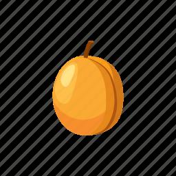 apricot, cartoon, food, fruit, ripe, sweet, yellow icon