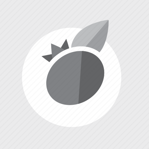 application, blueberry, cooking, food, fruit, g, game, gary, healthy, kitchen, play, vegetable icon