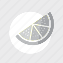 application, food, fruit, g, game, gray, lime icon
